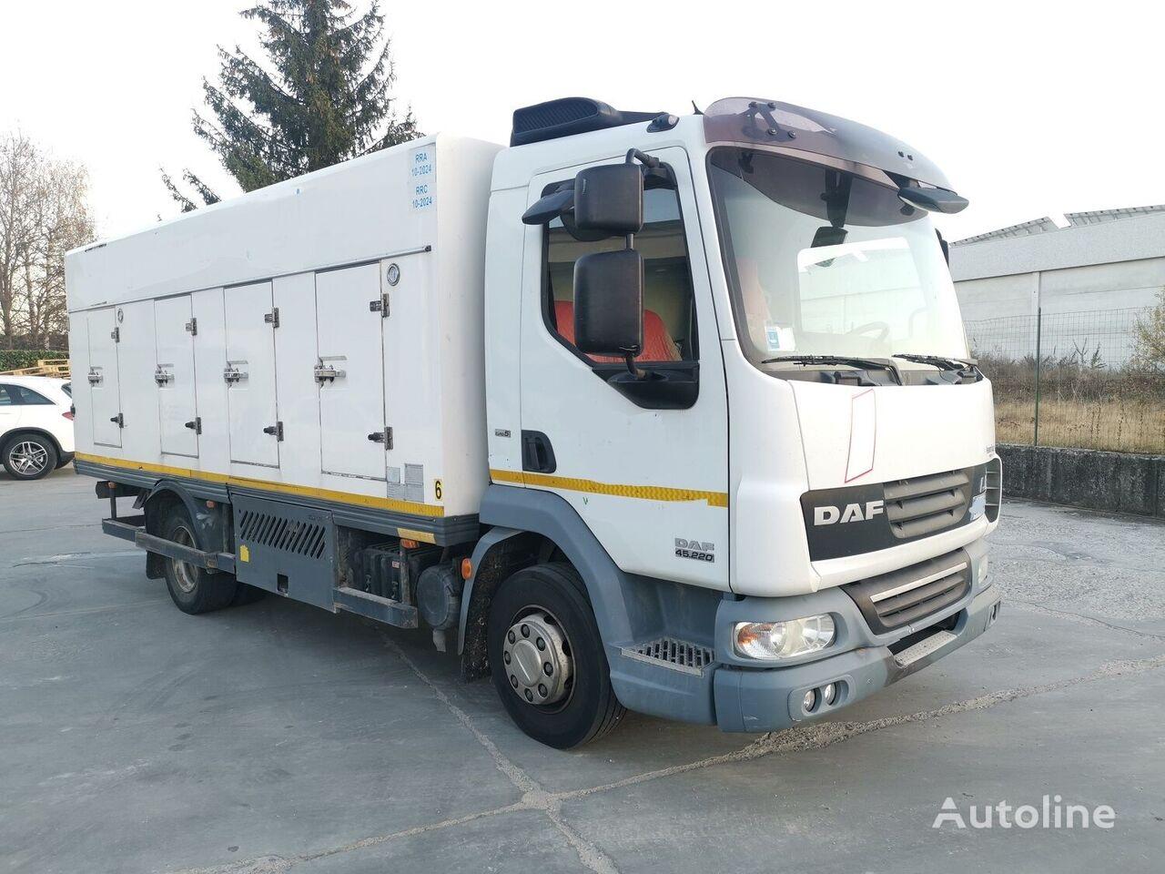 DAF 45.220 SURGELATI ATP 10/2024 - 120QLI ice cream truck